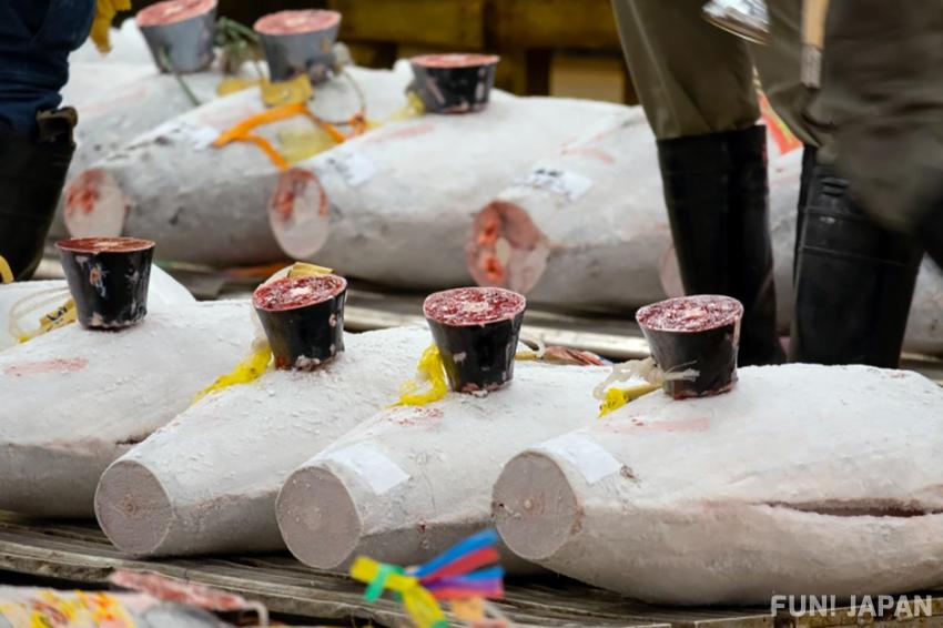 豐洲市場  (東京的魚類批發市場)