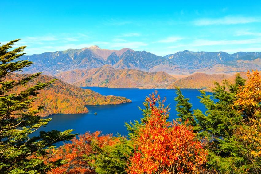 Top 5 Souvenirs to Buy when shopping in Nikko, Japan