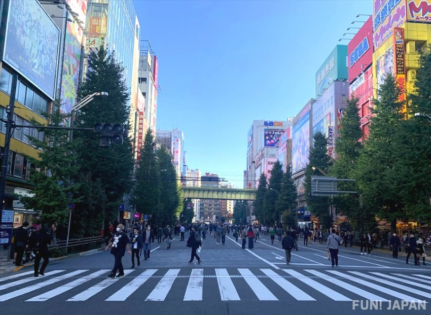 Where is the Pedestrian Zone in Akihabara