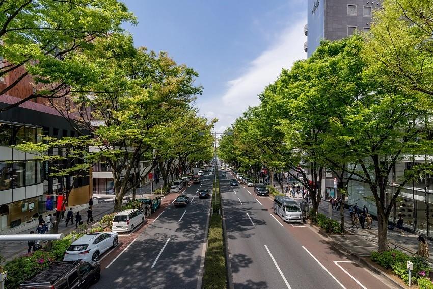 3 Kinds of Hotel in Omotesando