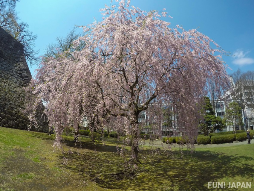 The Magnificent Natural and Historical Spots in Morioka, Japan