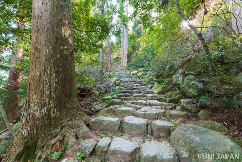 Enjoy the sublime Shimane in Japan, a hidden gem steeped in culture